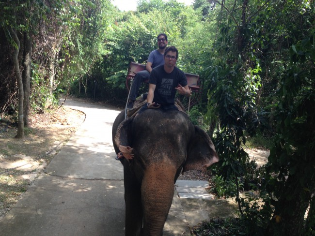 Thai Elephant Ride